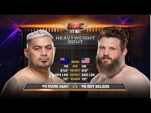 Mark Hunt vs Roy Nelson UFC Japan.