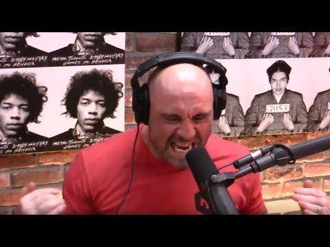 Joe Rogan discusses Michael Bisping.