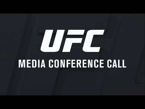 UFC 217 Georges St-Pierre media call.