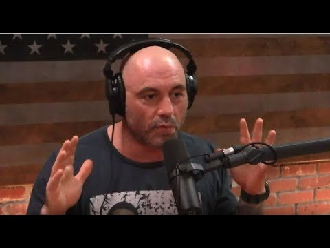 Joe Rogan and Dan Carlin podcast.