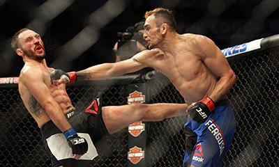 UFC lightweight Tony ferguson vs lando vannata.