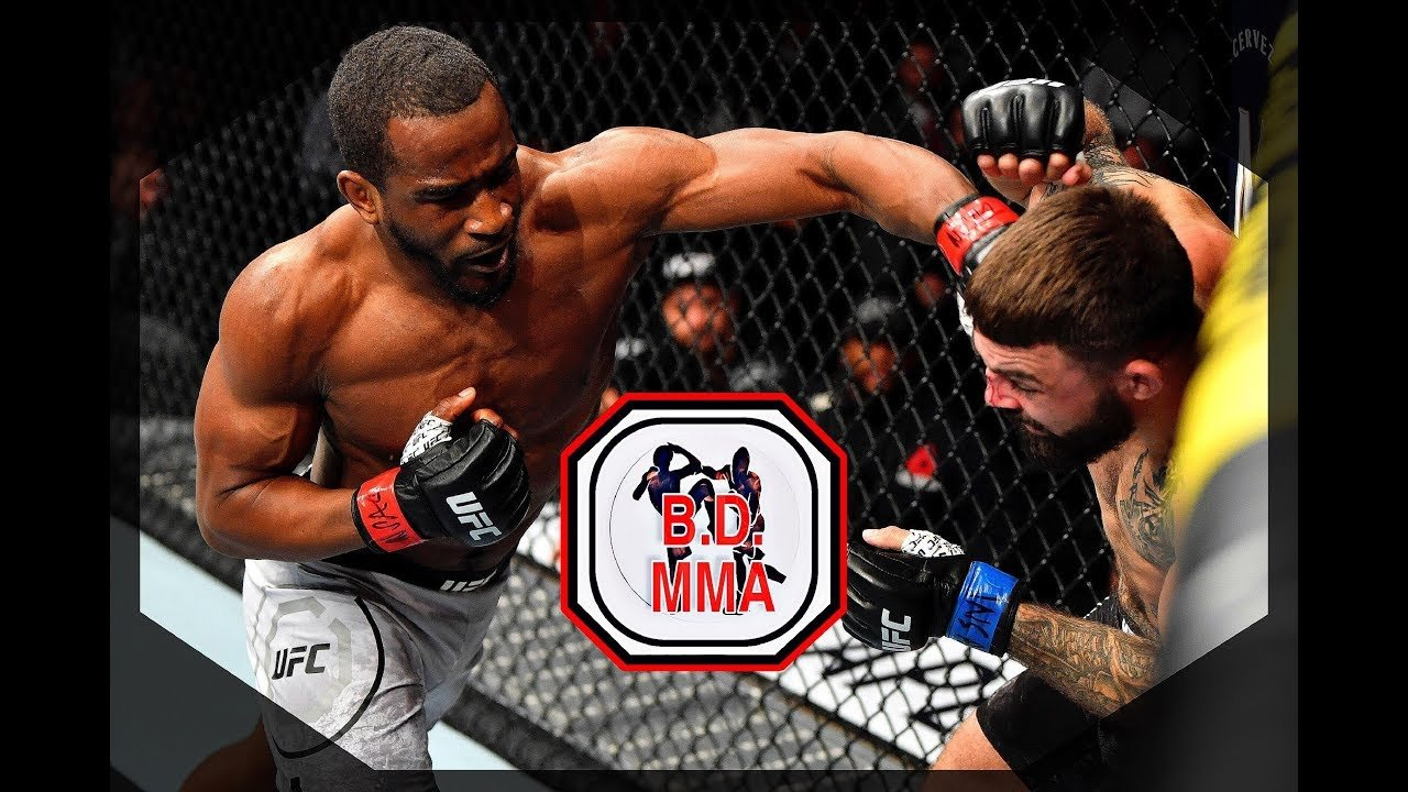 Geoff Neal Against Ufc Welterweight Mike Perry.