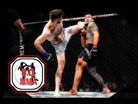 Edmen Shahbazyan UFC middleweight fighting Brad Tavares.