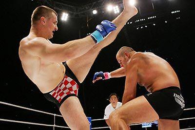 Fedor Emelianenko vs mirko cro cop pride final conflict.