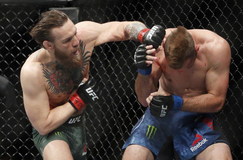 Conor Mcgregor Punching Donald Cerrone Ufc 246