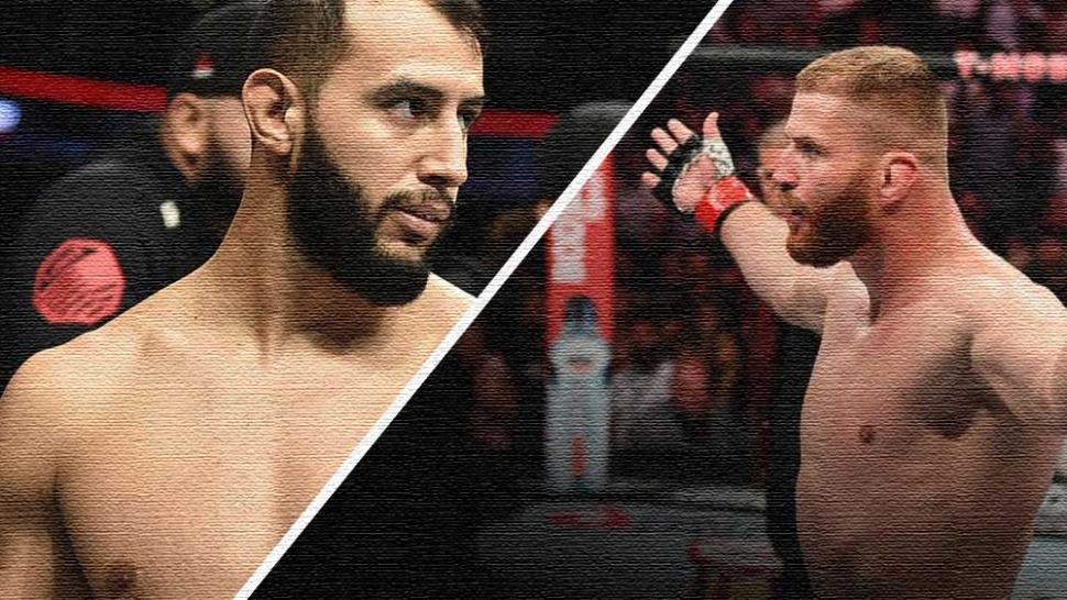 Dominick reyes vs Jan Blachowicz UFC fight island